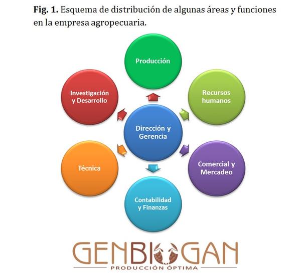 Estructura Organizacional De Una Empresa Agricola - UKIndex