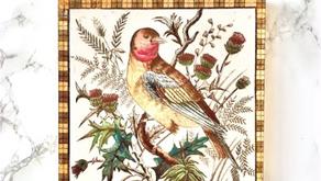Oiseaux et symbolique