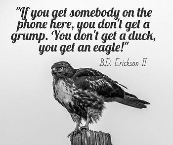 bd erickson satic eagle