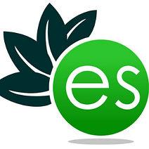 ElectricSense logo.jpeg