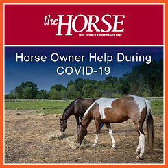 COVID-19 Horse Owner Help - The Horse-01