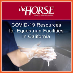 COVID-19 Equine Facilities - The Horse-0