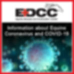 EDCC COVID-10 and Equine Coronavirus-01.
