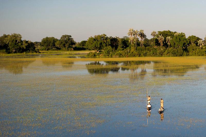 Mekoro Ride: Okavango Delta