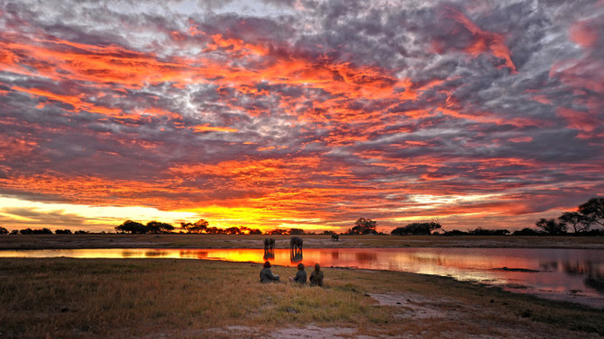 Hwange National Park Review