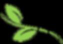 Pestworkx (2).png _edited.png