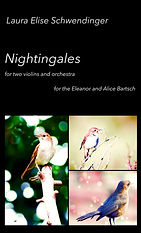 Cover for Nightingfales 2.jpg