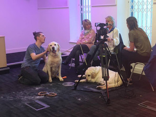 Student Charity Event raises money for Guide Dogs UK
