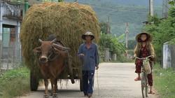 Fotos Vietnam1 235