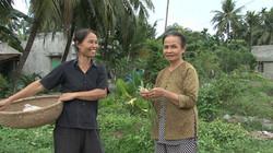 Fotos Vietnam1 237