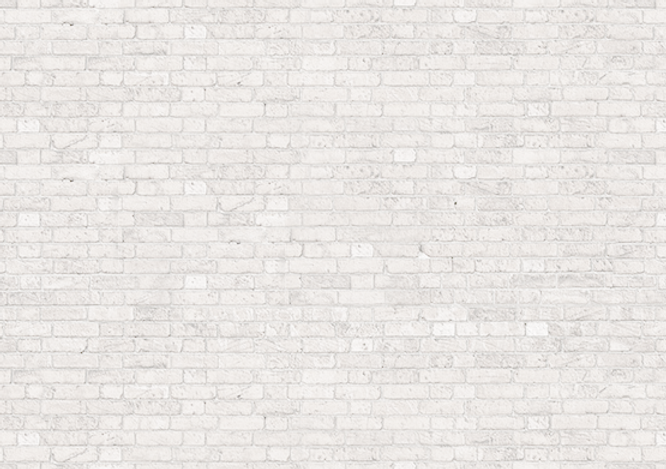 05-white-brick.png