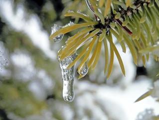 Melt the Ice