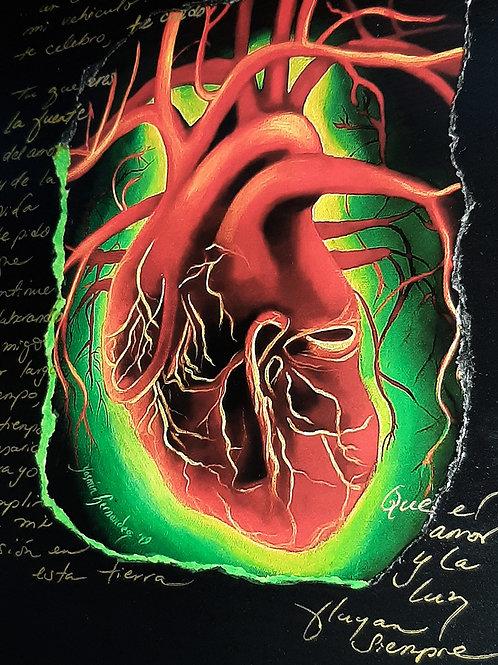 Corazón Luciérnaga (Firefly Heart)