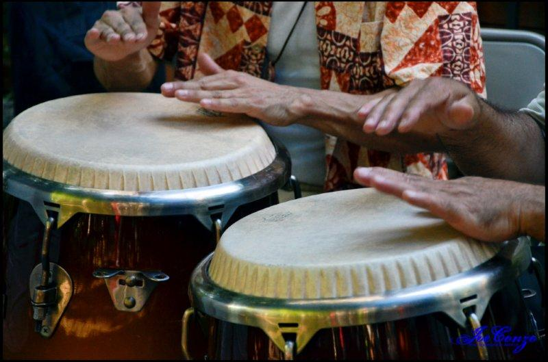 Congas for the Soldaderas