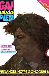renaud camus du grand amour gai pied 45 1982