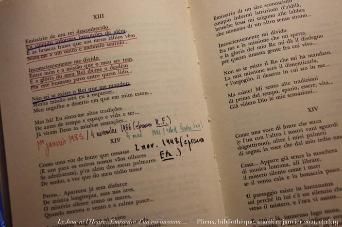 Fernando Pessoa, Une sola moltitudine