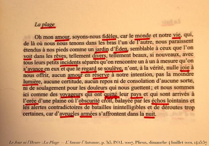 L'Amour l'Automne, P.O.L, 2007, p. 315