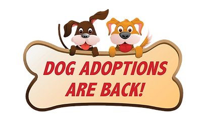 Dog-Adoptions.png