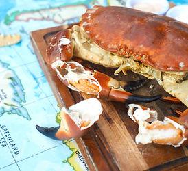 crab close up.jpg