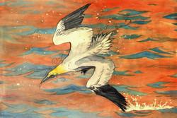 Northern Gannet Watercolour
