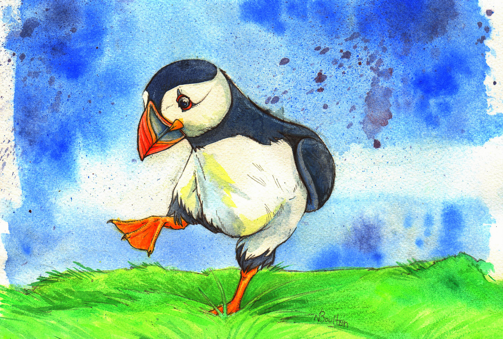 Puffin Traditional Media Watercolour
