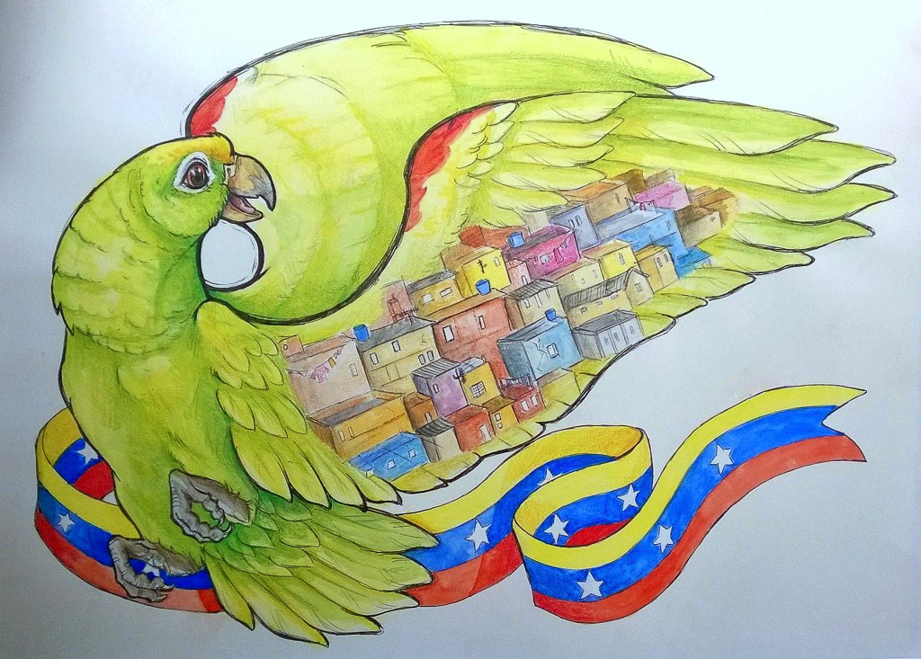 Amazon Parrot Traditional Media Venezuela Shanty Town Flag Watercolour