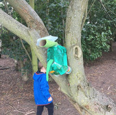 Cardboard dinosaur in a real tree, a child walks past in the background