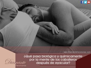 ¿Qué pasa biológica y químicamente por la mente de los caballeros después de eyacular? la ciencia lo