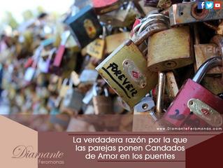 ¡Sorprendente! La verdadera razón por la que las parejas ponen Candados de Amor en los puentes
