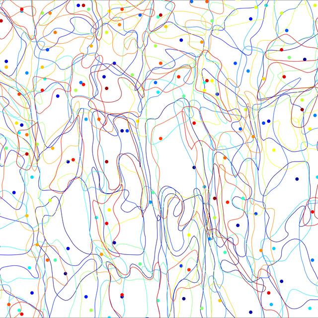 Linear Neighborhood and Dynamical Linear Neighborhood