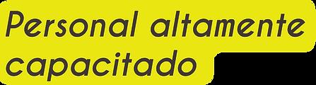 SERVICIO TOA WEB3.png