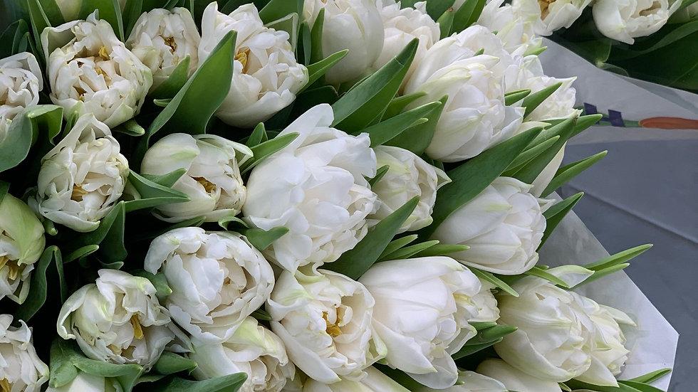 Моно букет из  пионовидных тюльпанов (31шт)