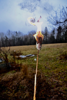 Cattail Torch