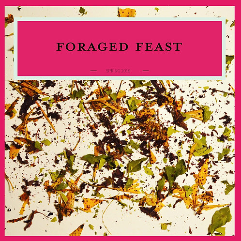 Foraged Feast Cookbooklet