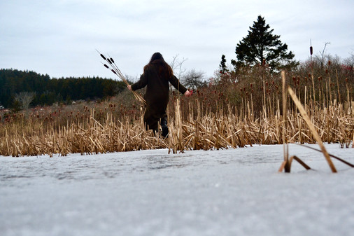 Gathering cattails for winter torches