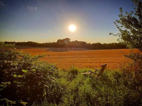 Golden Days & Autumn Equinox
