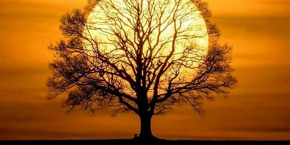 Living Lineage ~ Samhain Online Retreat