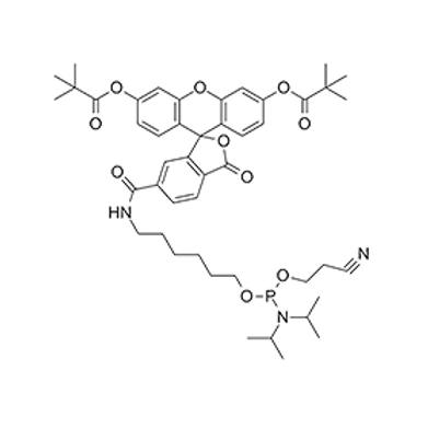 5'-Fluorescein Phosphoramidite (6-FAM)