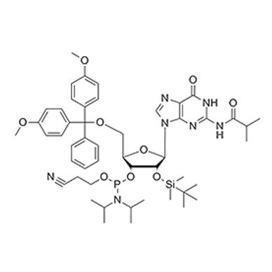 N2-iBu-5'-O-DMT-2'-O-TBDMS-G-CE Phosphoramidite
