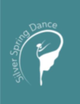 SSDC_Logo_v3Teal.png