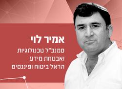 אמיר-לוי