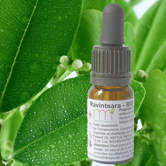 Ravintsara Organic Essential Oil