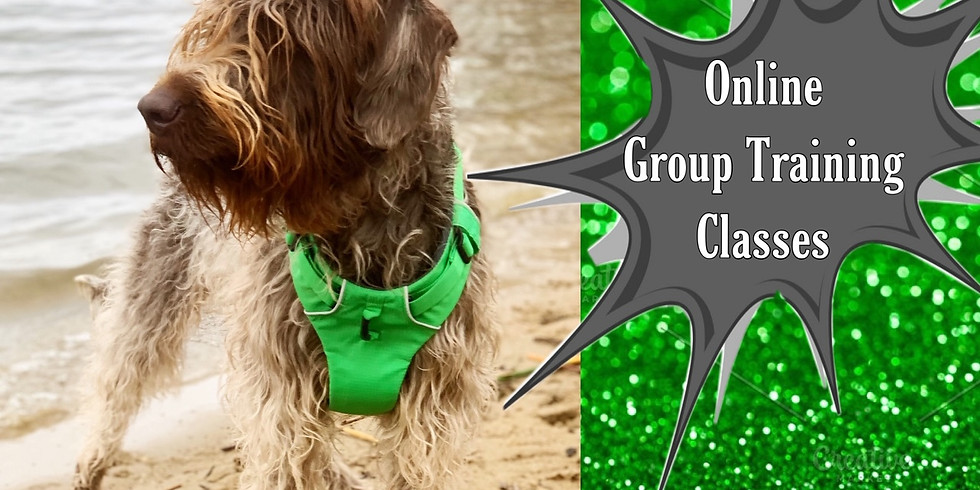 4/14-4/16 Online Group Training Classes