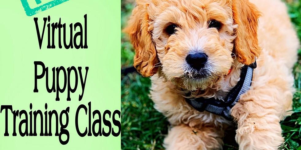 Free Virtual Puppy Class