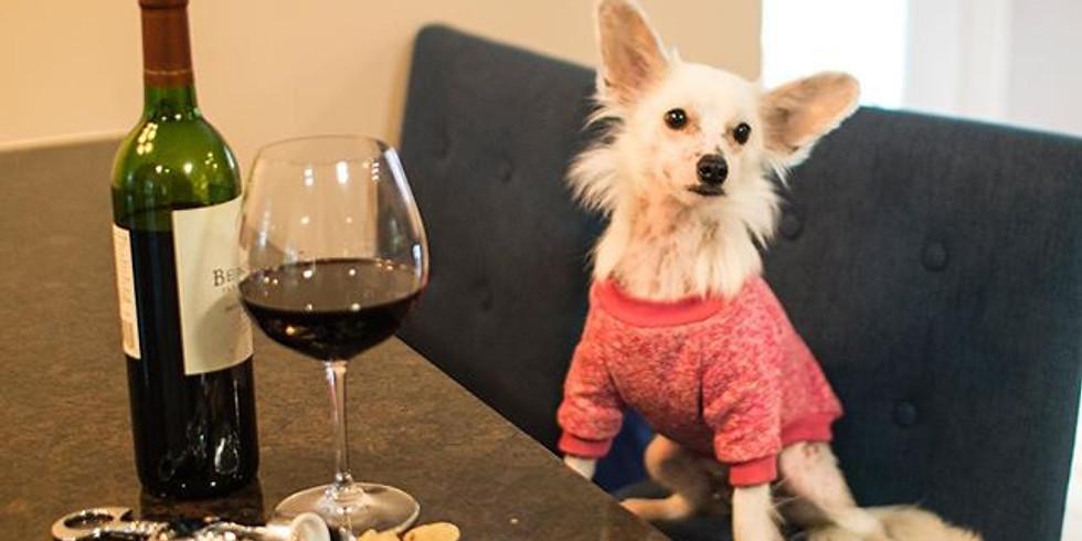 BOW Dog Treat & Wine Pairing