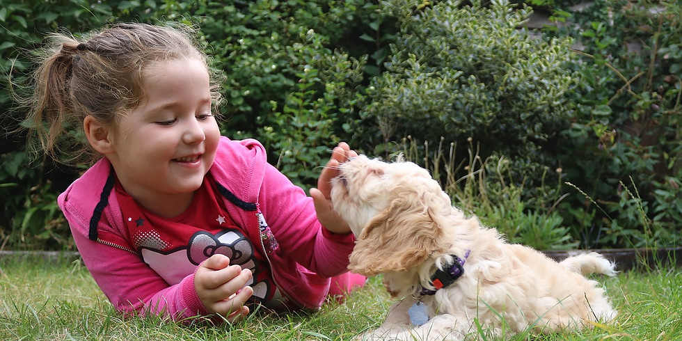 Supplemental Canine Support Program