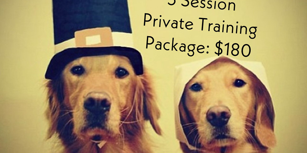 Thanksgiving Sale: 3 Session Private Training