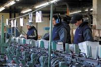 Madygraf: ejemplo de trabajo, producción y cuidado de medio ambiente