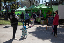 Ferias en San isidro: del productor a la comunidad