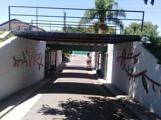 Barrio El Ceibo: el arte no se mezquina, las excepciones tampoco